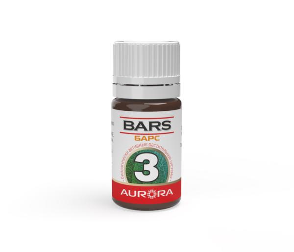 БАРС (BARS) 3